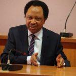 Let Us See Evidence When You Kill Bandits – Senator Shehu Sani Tells Nigerian Army