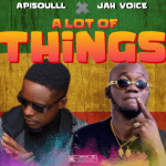 Apisoulll — A Lot Of Things Ft. Jah Voice
