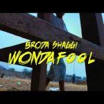 DOWNLOAD MP3: Broda Shaggi - Wonda Fool