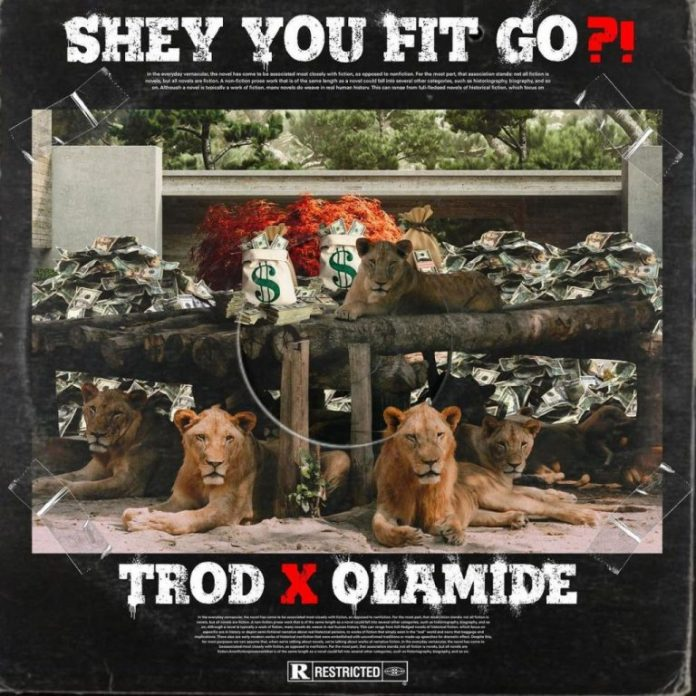 Trod – Shey You Fit Go?! ft. Olamide